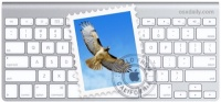 How to navigate Mail with your keyboard